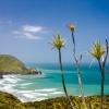 Anawhata Beach, New Zealand