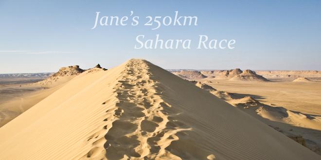 training tips sahara race 250km-72
