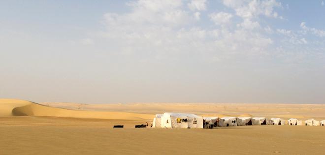 sahara race 250km-105a