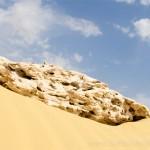 Blog From the Desert: Blister count:1. Spirit: 10/10.
