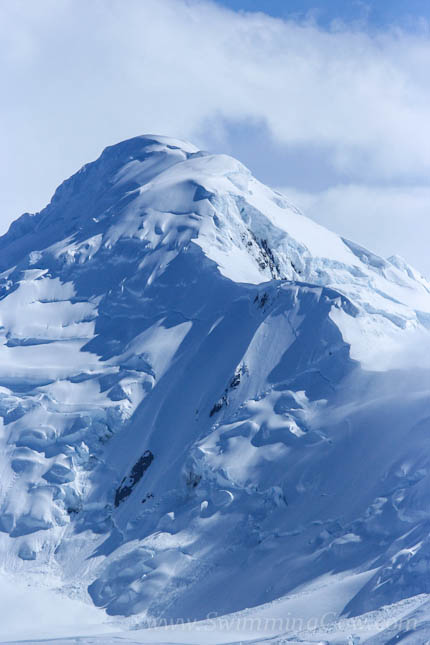 Antarctica travel tips 221 blog