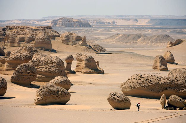 sahara race 250km-135