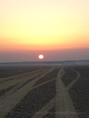 sahara race 250km-137