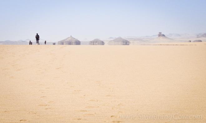 sahara race 250km-66