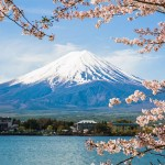 How I Picked Up Japanese In 7 Months