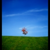 tree__by_leigh787